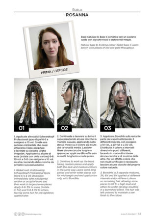 ethos_hairdressing_status step by step